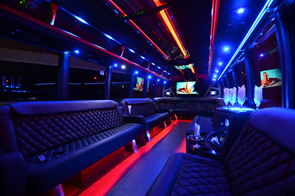 40 passenger party bus rental Saint Paul Minnesota